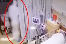 Đang lim dim, bệnh nhân la hét lớn khi một 'bóng trắng' lướt tới
