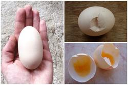 Nếu trứng có dấu hiệu này, dù giá rẻ như bèo cũng đừng dại ăn!