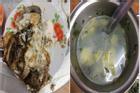 Nhà chồng phần cơm như mèo mửa, còn nhấn mạnh 'có ăn là may'