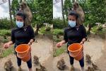 Khỉ bao vây du khách để xin ăn ở Thái Lan