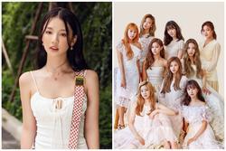AMEE bị tố 'xơi lại' hit cũ của thánh album xứ Hàn Twice?