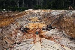 Nạn khai thác vàng trái phép tàn phá Amazon