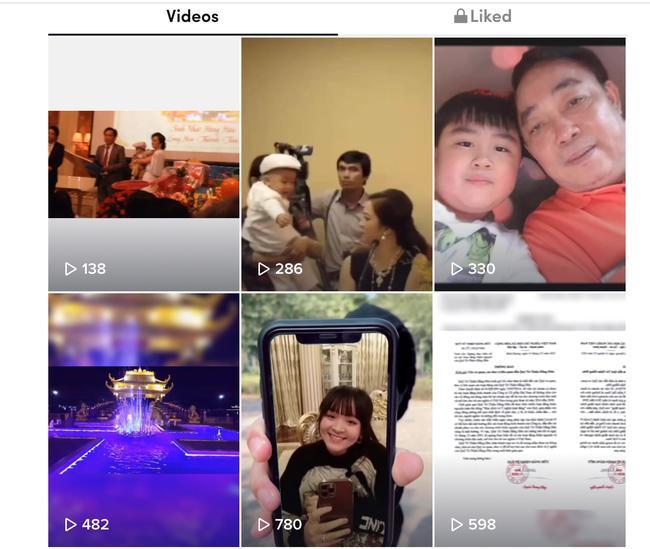 Nữ đại gia nghỉ livestream, con trai chăm chỉ đăng video TikTok-2