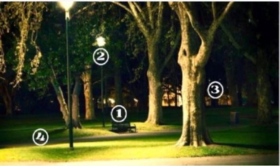 Chọn khu vực trong công viên bạn thấy an toàn và tìm hiểu thêm về bản thân-1