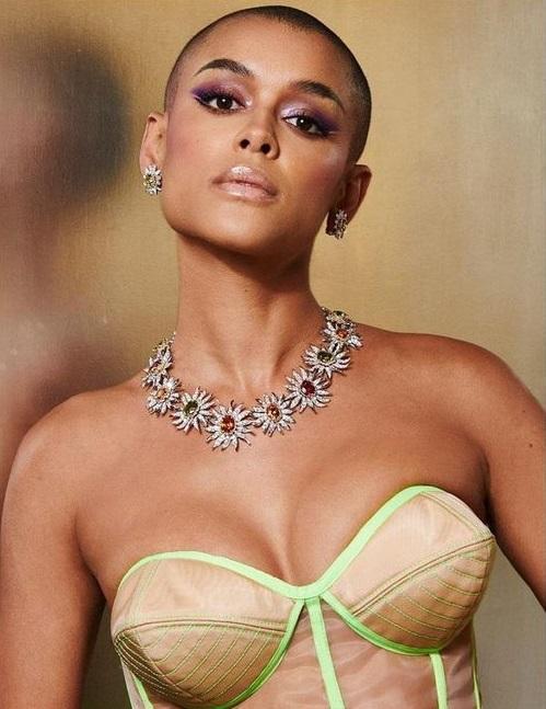 Những món nữ trang đắt giá nhất sự kiện thời trang Met Gala 2021-3