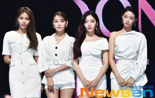 Mina và Hwayoung: Trà xanh - rắn độc hủy hoại tương lai nhóm-16