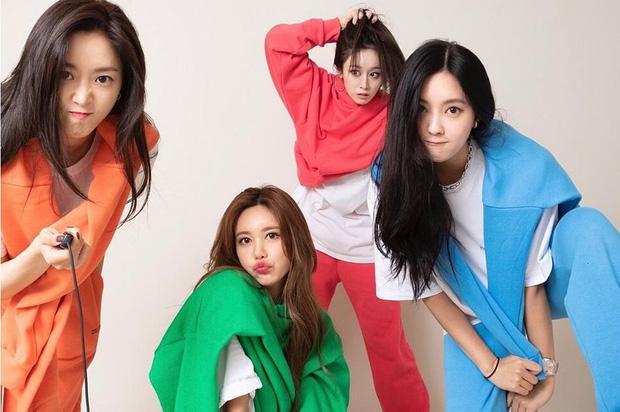 Mina và Hwayoung: Trà xanh - rắn độc hủy hoại tương lai nhóm-17