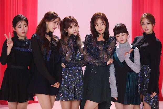 Mina và Hwayoung: Trà xanh - rắn độc hủy hoại tương lai nhóm-6