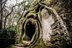 Công viên quái vật huyền bí bị lãng quên suốt 400 năm