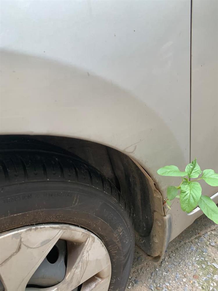 Xe máy nở hoa, ô tô chuột làm tổ sau 2 tháng nghỉ giãn cách-9
