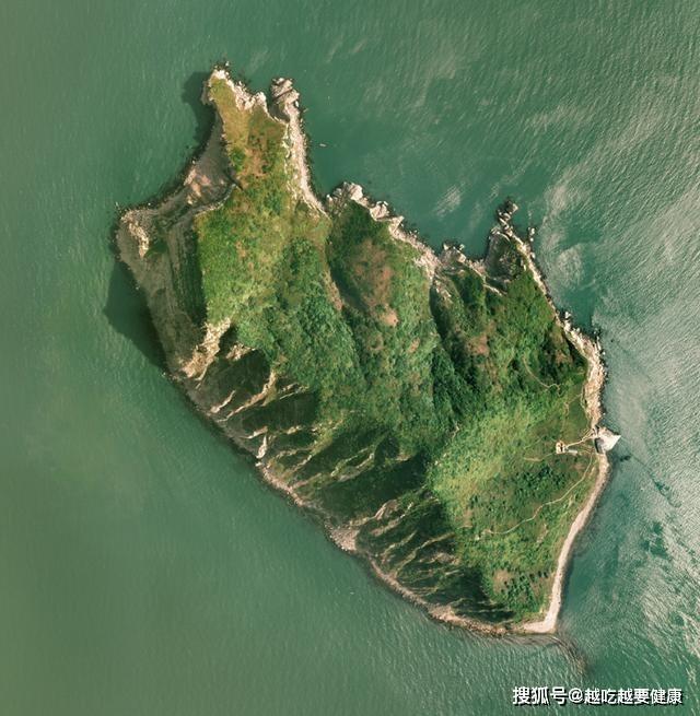 Rợn người hòn đảo gần 20.000 con rắn độc trong 1km2-2