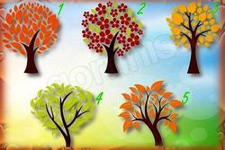 Chọn 1 cái cây, nó sẽ cho biết người bạn yêu trong tương lai là ai
