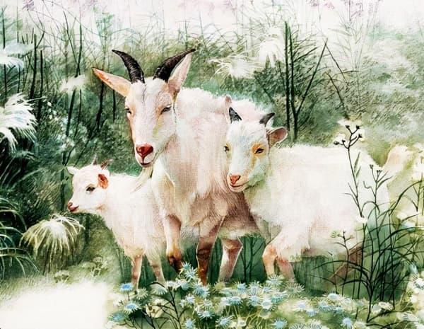 3 con giáp gặp nhiều điều tốt, trở nên giàu có từ giờ đến tháng 12-1