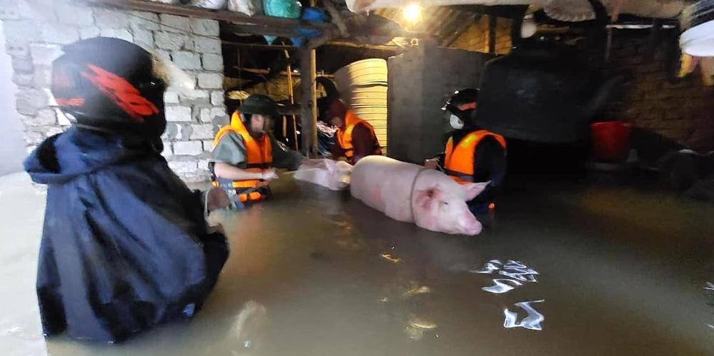 Thủy điện và hồ đập xả lũ, nhà dân ở Nghệ An ngập sâu trong nước-12