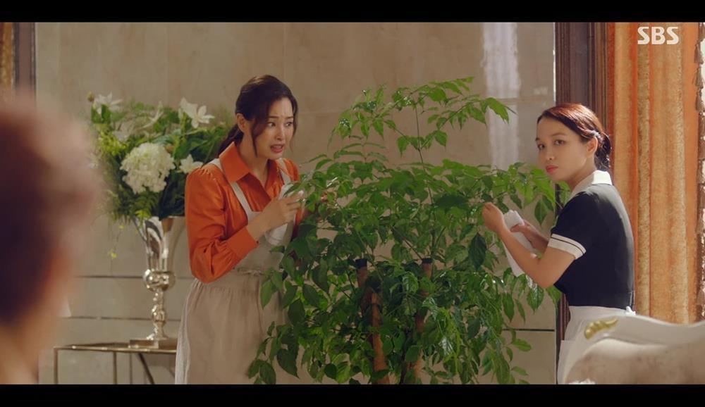 Cô gái Việt đóng với Honey Lee bị hụt vai trong Squid Game-1