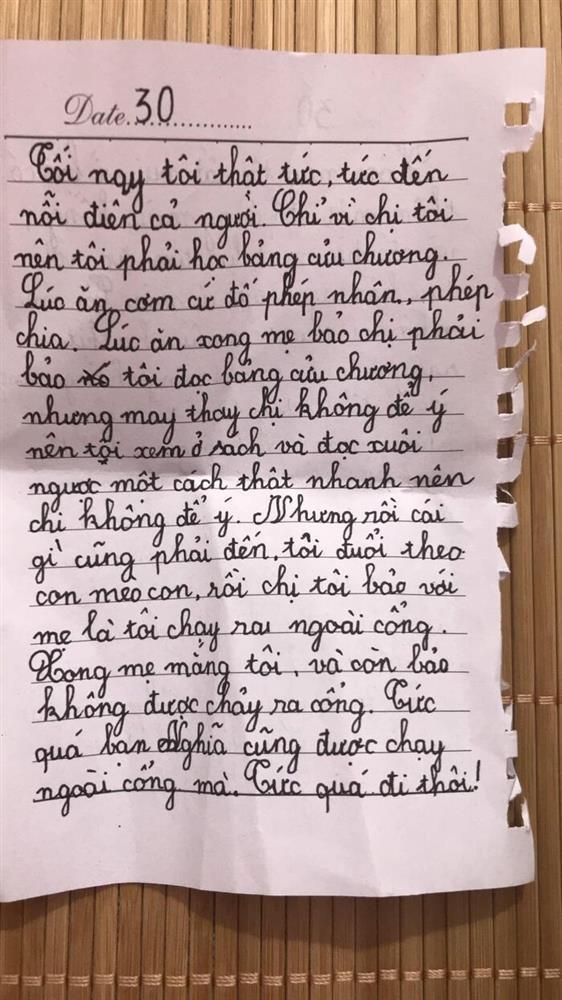 Bé gái lớp 2 viết nhật ký nói xấu cả thế giới, câu chốt gây cười-1