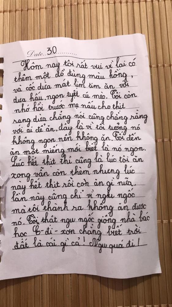 Bé gái lớp 2 viết nhật ký nói xấu cả thế giới, câu chốt gây cười-2