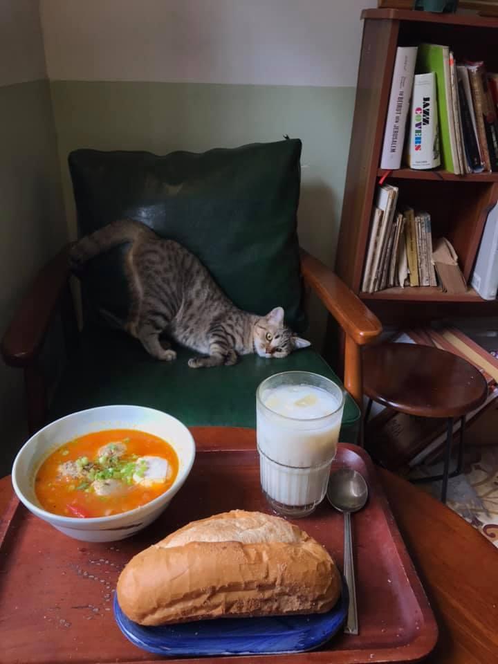 Cách ly cùng 1 chú mèo, 8x vẫn đam mê nấu toàn món ngon-3