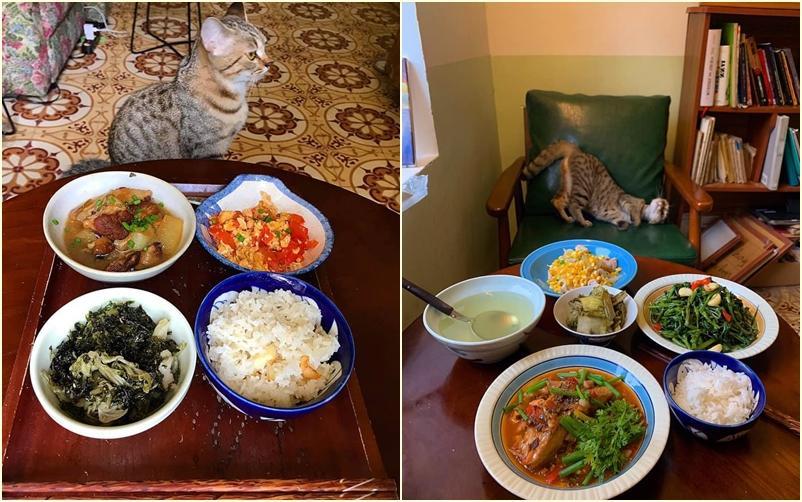 Cách ly cùng 1 chú mèo, 8x vẫn đam mê nấu toàn món ngon-6