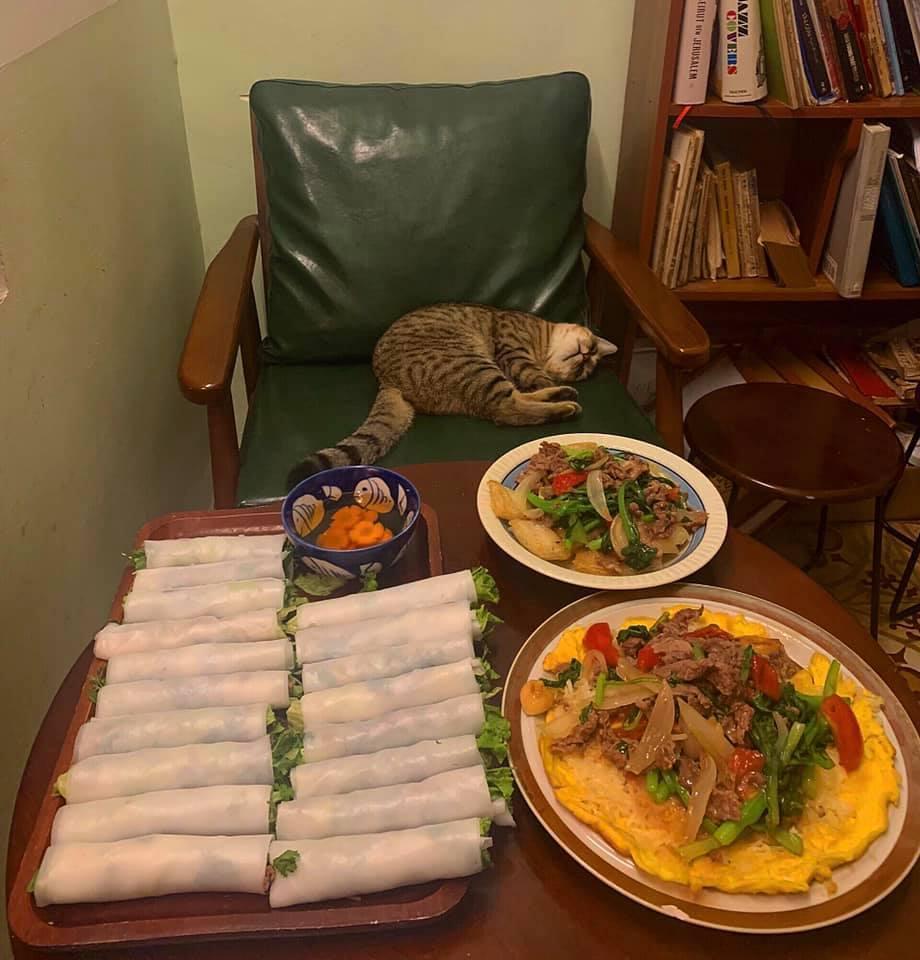 Cách ly cùng 1 chú mèo, 8x vẫn đam mê nấu toàn món ngon-10