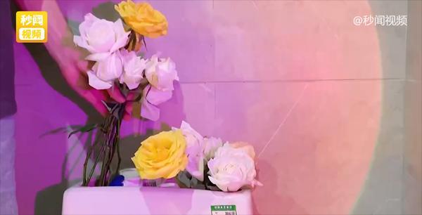 Bạn trai người ta mua hoa tặng người yêu chất đầy tủ lạnh, cắm cả bồn cầu-3