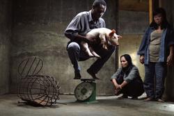 Cục trưởng Điện ảnh nói về việc 'Vị' không còn là phim Việt Nam