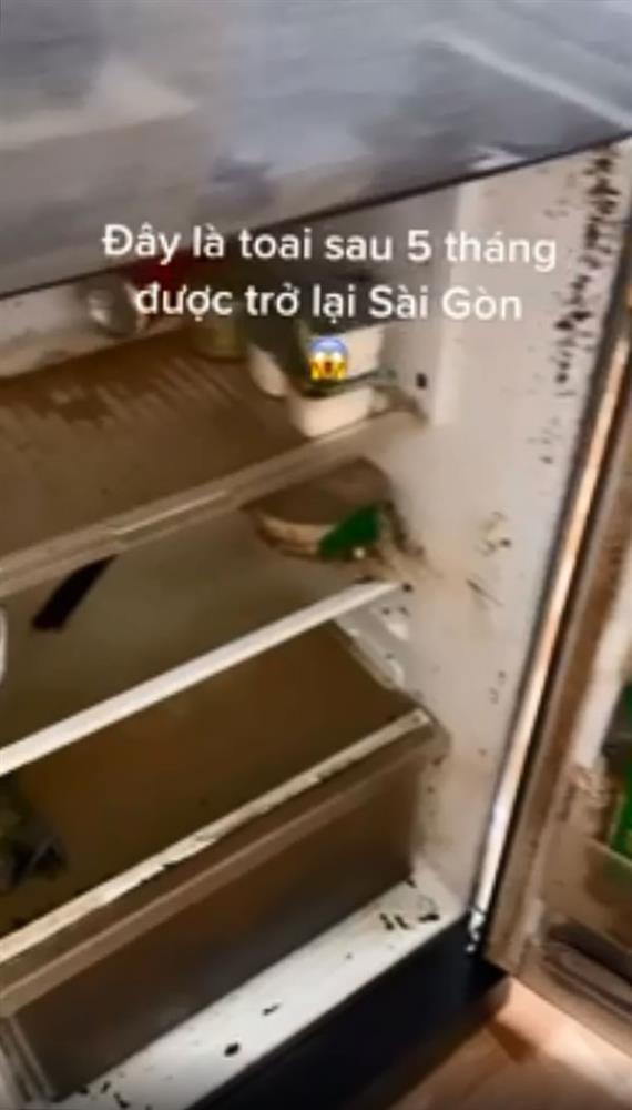 5 tháng trở lại Sài Gòn, cô gái sốc thứ để trong tủ lạnh-1