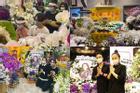 Dàn sao Việt gửi hoa viếng xếp đầy nhà riêng Phi Nhung