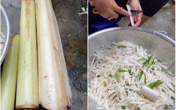 Thân chuối ở Việt Nam vứt chỏng chơ, sang nước ngoài giá siêu đắt-1