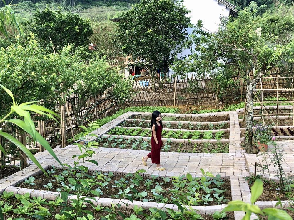 Mắc kẹt ở Mộc Châu, gia đình Hà Nội cuốc đất làm vườn, trèo đèo lội suối-11