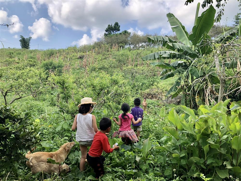 Mắc kẹt ở Mộc Châu, gia đình Hà Nội cuốc đất làm vườn, trèo đèo lội suối-12
