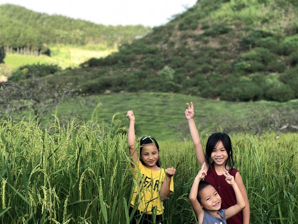 Mắc kẹt ở Mộc Châu, gia đình Hà Nội cuốc đất làm vườn, trèo đèo lội suối-15