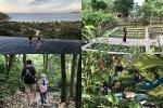 Mắc kẹt ở Mộc Châu, gia đình Hà Nội cuốc đất làm vườn, trèo đèo lội suối