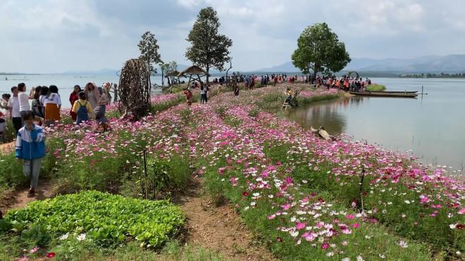 Đảo hoa Kon Trang Long Loi - Có nơi nào đẹp hơn?-1