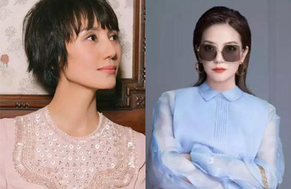 Triệu Vy mất vai trong The Good Wife sau khi bị phong sát?-1