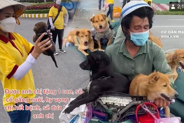15 con chó bị tiêu hủy: Diễn biến bất ngờ từ 1 con sống sót-1