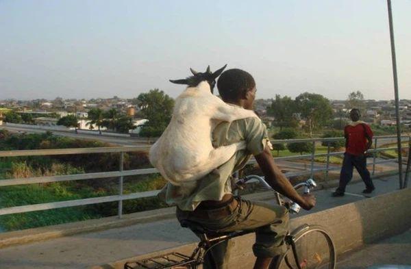 Những điều hiếm có khó tin ở Châu Phi khiến bạn phải há mồm-10