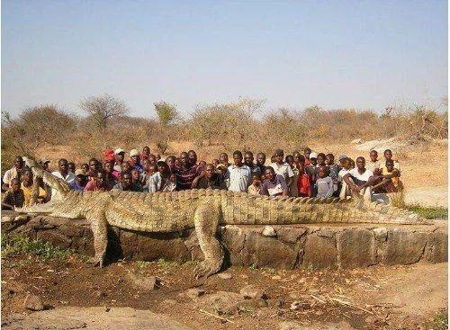 Những điều hiếm có khó tin ở Châu Phi khiến bạn phải há mồm-3