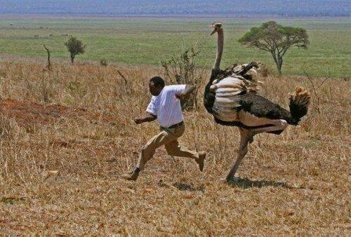 Những điều hiếm có khó tin ở Châu Phi khiến bạn phải há mồm-4
