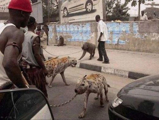 Những điều hiếm có khó tin ở Châu Phi khiến bạn phải há mồm-5