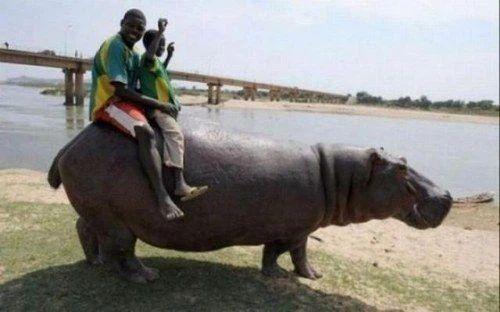 Những điều hiếm có khó tin ở Châu Phi khiến bạn phải há mồm-11