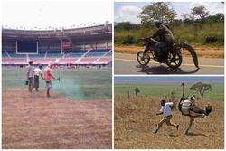 Những điều hiếm có khó tin ở Châu Phi khiến bạn phải 'há mồm'