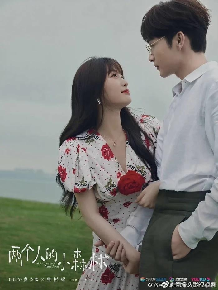 Loạt poster phim Hoa ngữ sao chép giống nhau gây tranh cãi-8