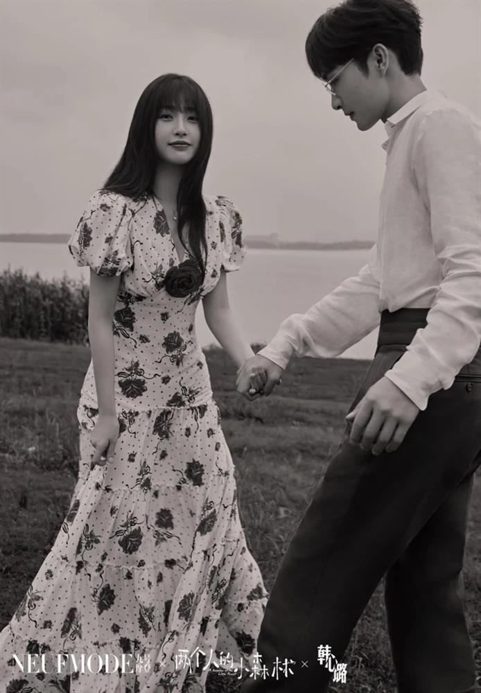 Loạt poster phim Hoa ngữ sao chép giống nhau gây tranh cãi-9