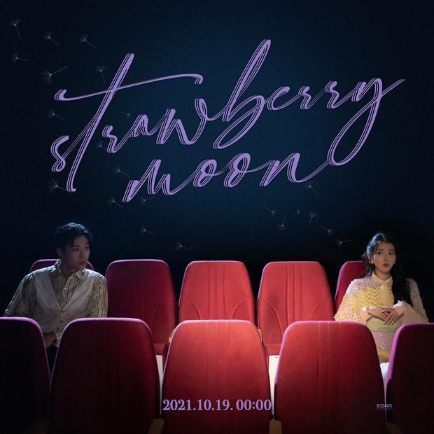 Nam chính MV mới của IU hóa ra là một nửa tiểu tam trong Hospital Playlist?-1