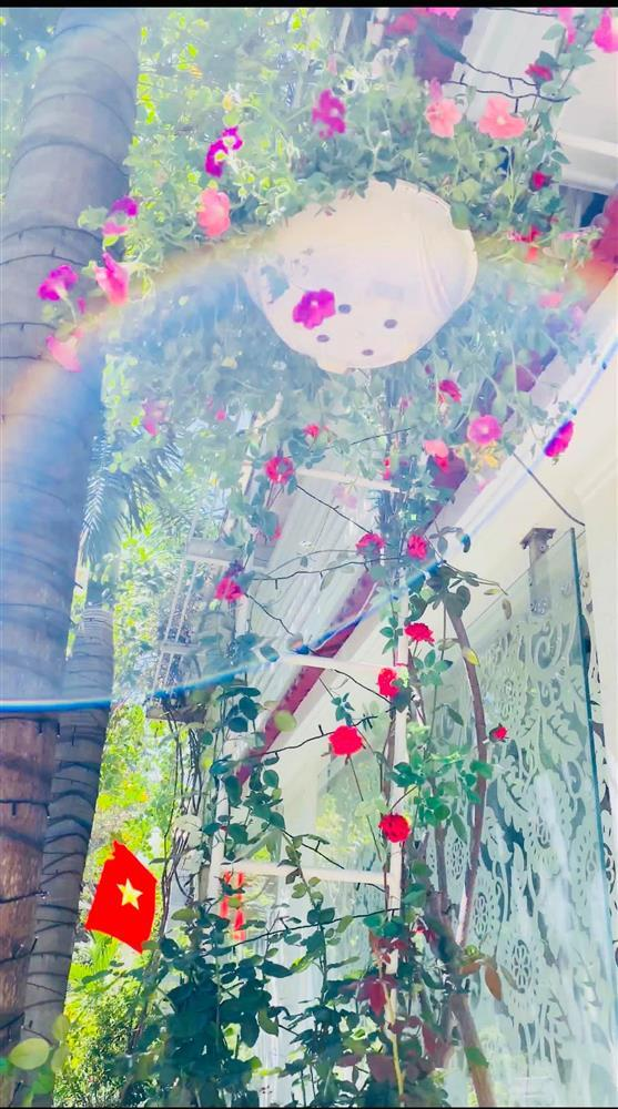 Vy Oanh khoe cận cảnh biệt thự ngập sắc hoa chồng tặng-11