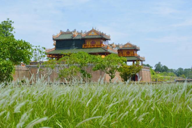 Thảm cỏ tranh đẹp ngẩn ngơ bên Hoàng thành Huế-1
