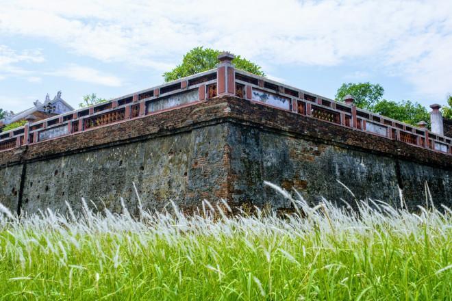 Thảm cỏ tranh đẹp ngẩn ngơ bên Hoàng thành Huế-2