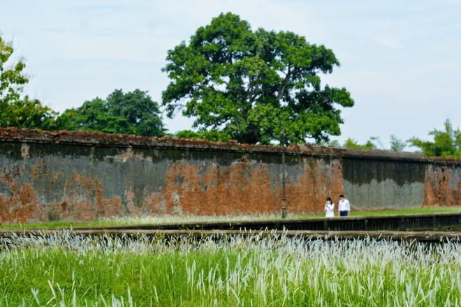 Thảm cỏ tranh đẹp ngẩn ngơ bên Hoàng thành Huế-9