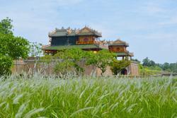 Thảm cỏ tranh đẹp ngẩn ngơ bên Hoàng thành Huế